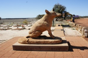 Dog Cemetary. Photo Credit: Australian Pacific Touring