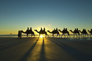 Cable Beach Camel Sunset Ride, Broome