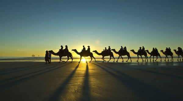 row of camel riders, sunset, broome, beach, scenery