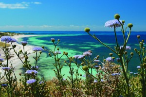 Scenery, Rottnest Island. Photo Credit: Tourism Western Australia