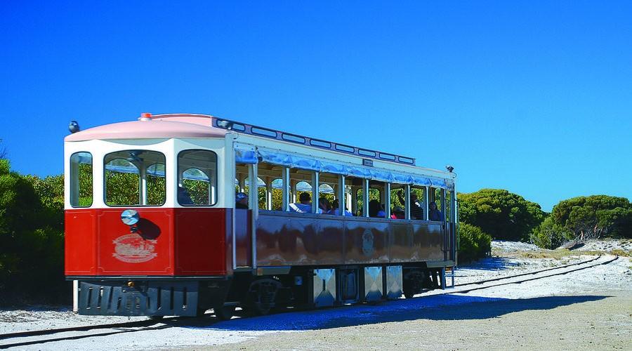 Historic Train Ride, Rottnest Island. Photo Credit: Rottnest Island Authority