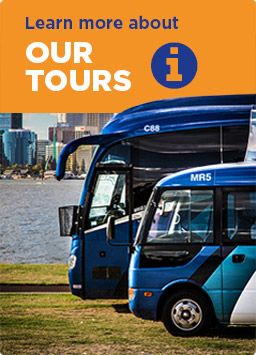 Learn more about ADAMS Tours